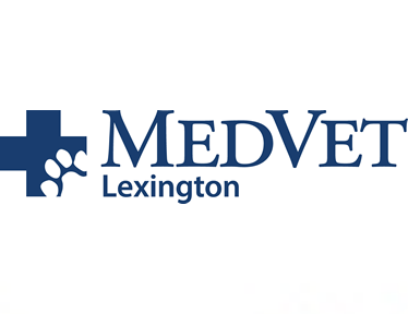 MedVet Lexington